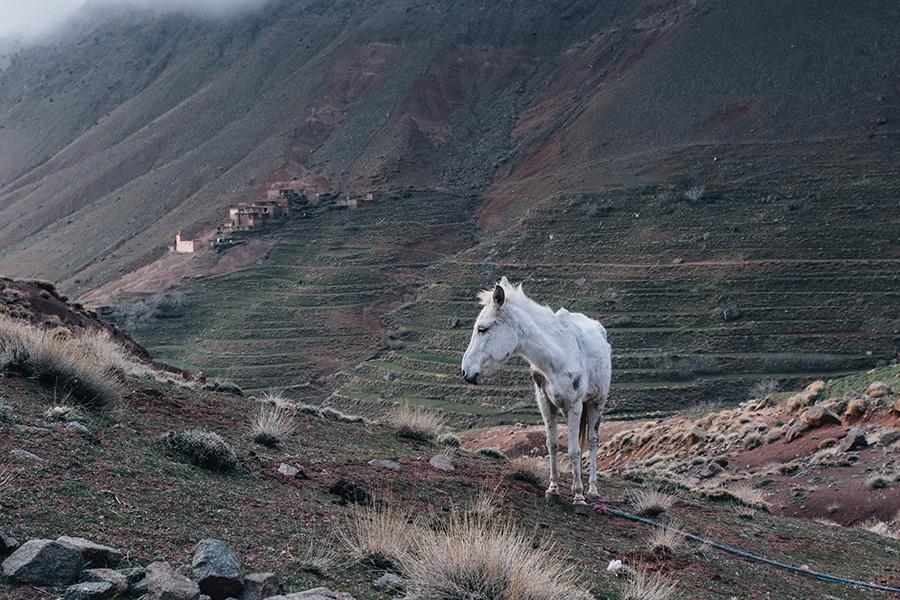 Paisaje en el Atlas, Marruecos