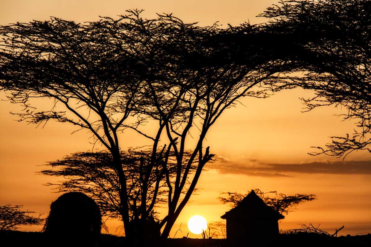 Savanna africana en Turkana