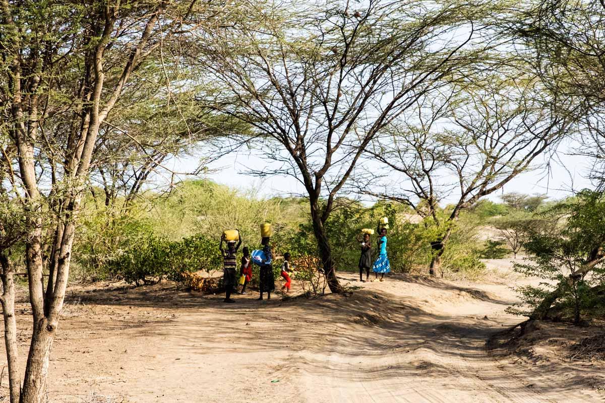 Turkana y los bidones amarillos