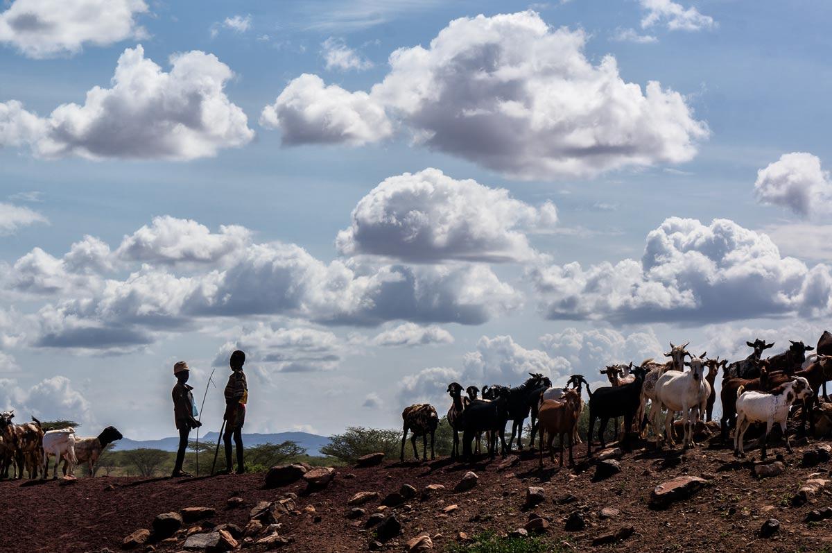Turkana y los niños pastores