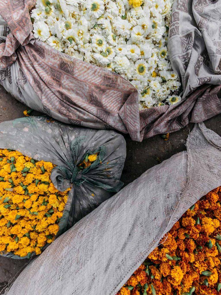 Mercado de las Flore Jaipur