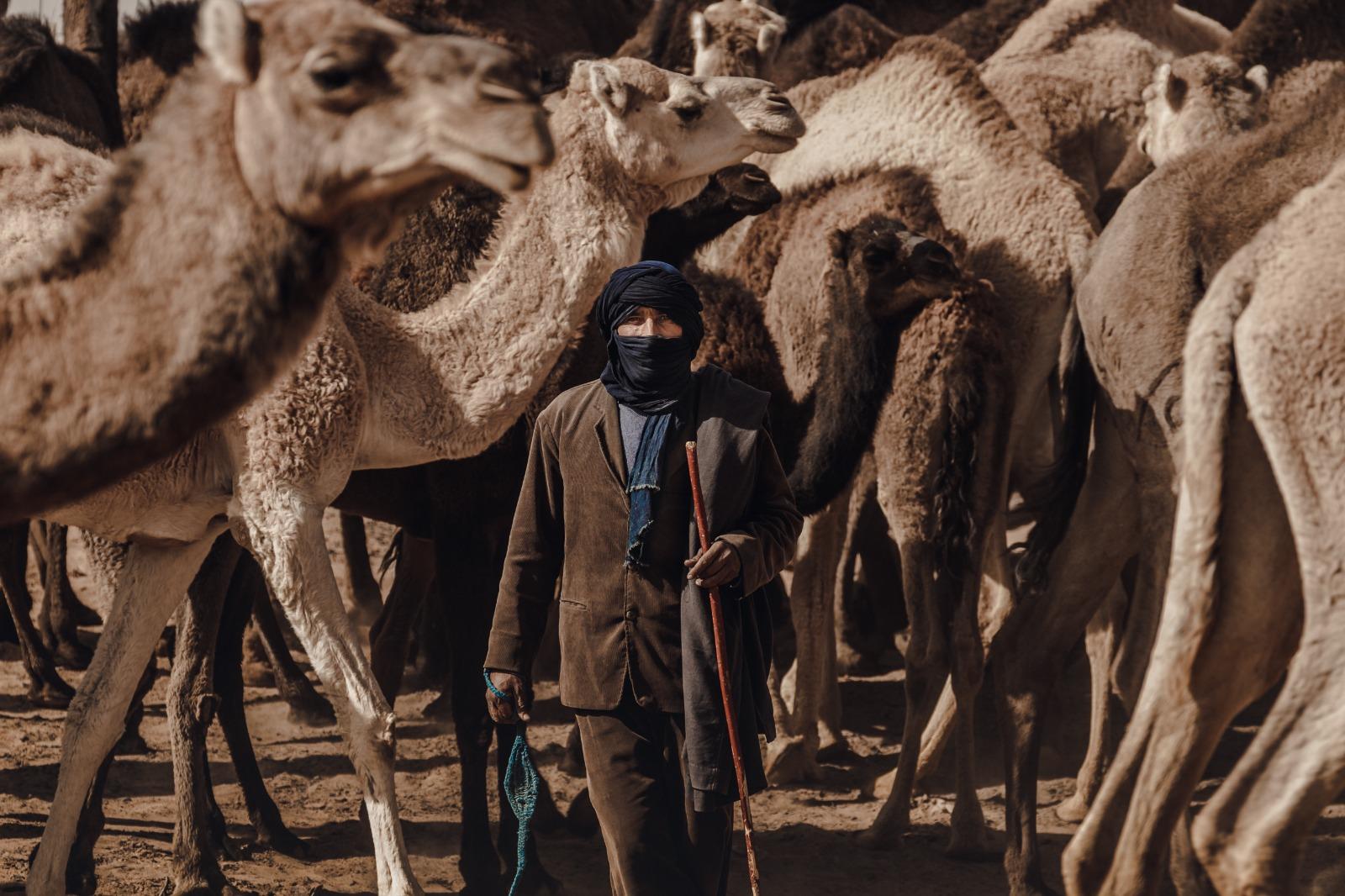 Pastor con camellos Sahara
